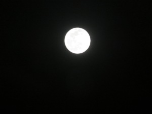 """""""Once in a blue moon"""""""